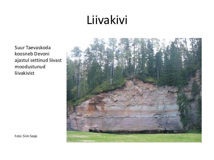 LiivakiviSuur Taevaskodakoosneb Devoniajastul settinud liivastmoodustunudliivakivistFoto: Siim Sepp