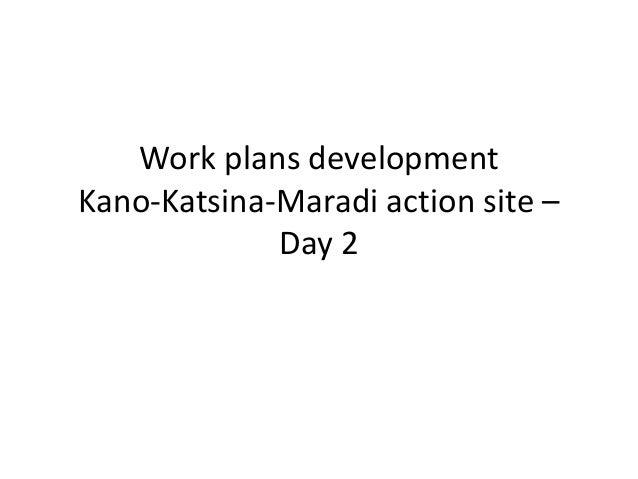Work plans development Kano-Katsina-Maradi action site – Day 2