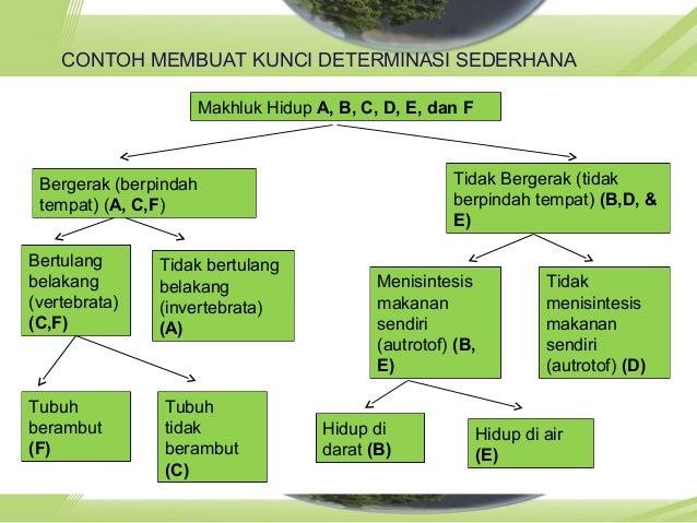 Klasifikasi pertemuan 2