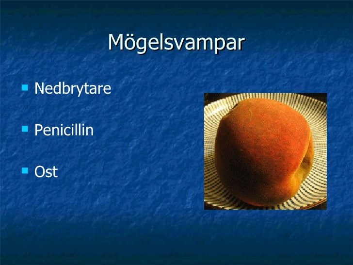 Mögelsvampar <ul><li>Nedbrytare </li></ul><ul><li>Penicillin </li></ul><ul><li>Ost </li></ul>