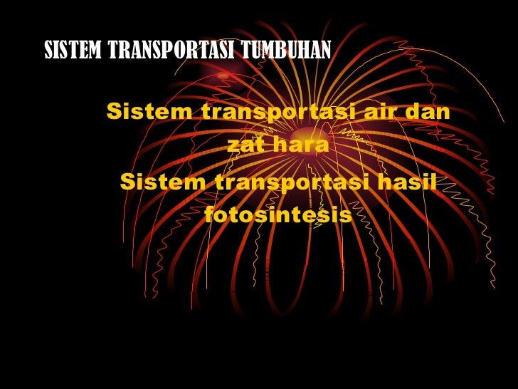 SISTEM TRANSPORTASI TUMBUHAN Sistem transportasi air dan zat hara Sistem transportasi hasil fotosintesis