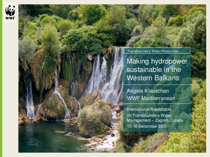 Transboundary Water ResourcesMaking hydropowersustainable in theWestern BalkansAngela KlauschenWWF MediterraneanInternatio...