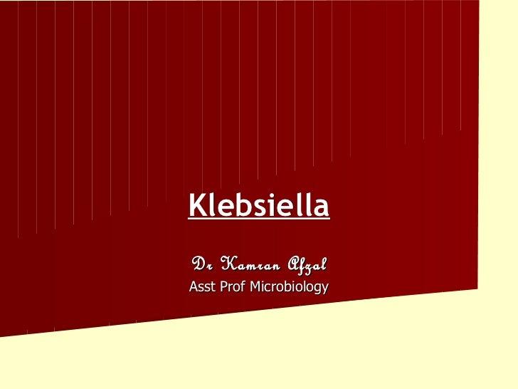 KlebsiellaDr Kamran AfzalAsst Prof Microbiology