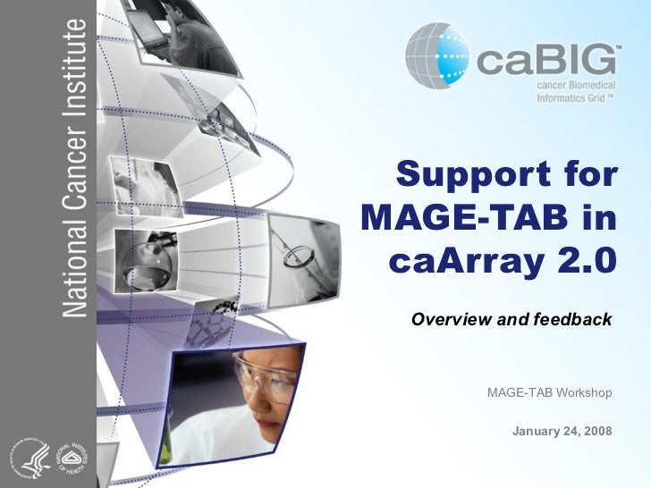 Support for MAGE-TAB in caArray 2.0 Overview and feedback MAGE-TAB Workshop January 24, 2008