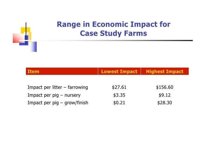 Economic Impact Analysis: A Case Study