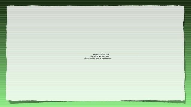 """O QuickTime™ e um        AnimaÁ""""o descompressorsão necessários para ver esta imagem."""