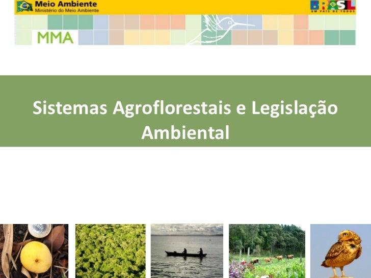 Sistemas Agroflorestais e Legislação            Ambiental