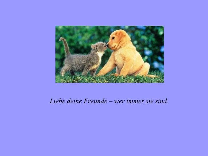 Liebe deine Freunde – wer immer sie sind.