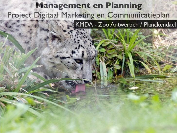 Management en PlanningProject Digitaal Marketing en Communicatieplan                   KMDA - Zoo Antwerpen / Planckendael