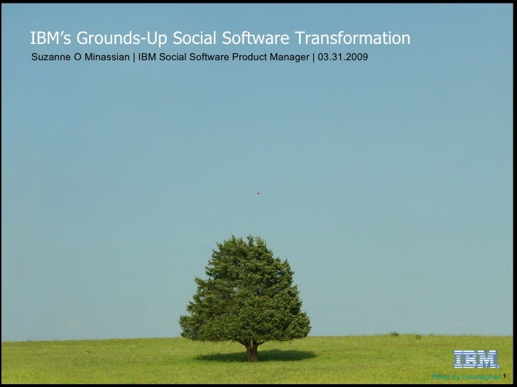 Suzanne O Minassian | IBM Social Software Product Manager | 03.31.2009 IBM's Grounds-Up Social Software Transformation Pho...