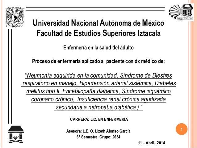Universidad Nacional Autónoma de México  Facultad de Estudios Superiores Iztacala  Enfermería en la salud del adulto  Proc...