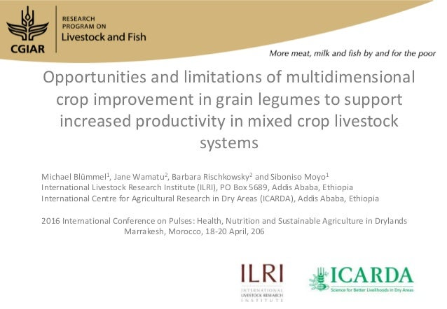 Opportunities and limitations of multidimensional crop improvement in grain legumes to support increased productivity in m...