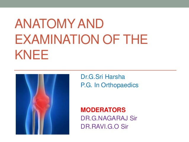 Anatomy and examination of the knee anatomy and examination of the knee drgi harsha pg in orthopaedics moderators ccuart Gallery