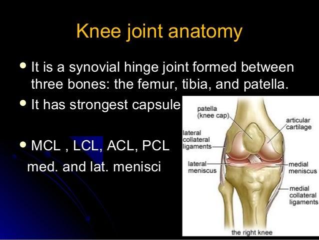 Knee arthrocentesis knee joint anatomyknee joint anatomy ccuart Image collections