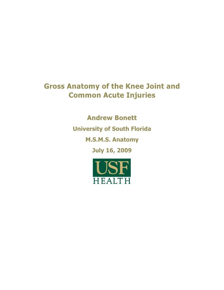 Gross Anatomy of the Knee Joint and       Common Acute Injuries              Andrew Bonett        University of South Flor...