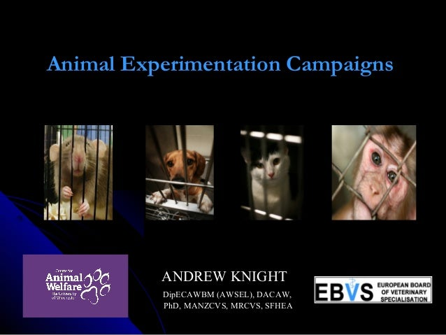 Animal Experimentation Campaigns      ANDREW KNIGHTANDREW KNIGHT DipECAWBM (AWSEL), DACAW,DipECAWBM (AWSEL), DACAW, PhD, M...