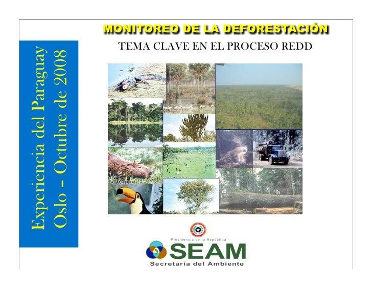 MONITOREO DE LA DEFORESTACIÓN                             TEMA CLAVE EN EL PROCESO REDD Experiencia del Paraguay Oslo – Oc...