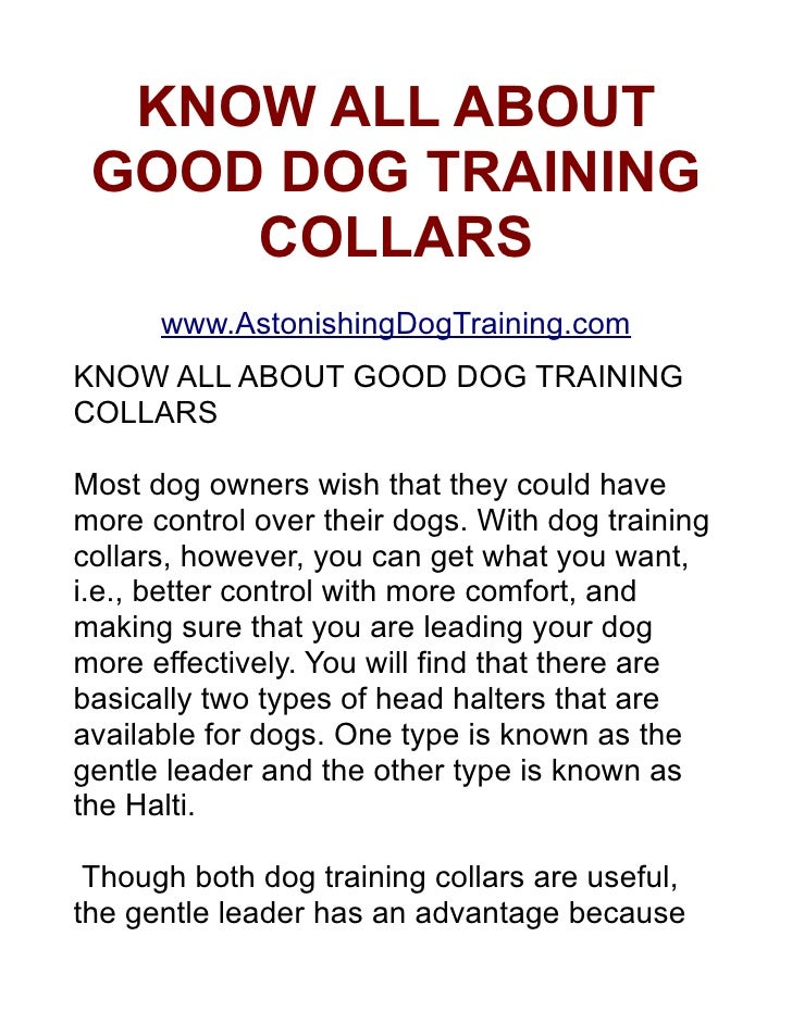 KNOW ALL ABOUT    GOOD DOG TRAINING        COLLARS     http://www.EconomyDogCare.com/    KNOW ALL ABOUT GOOD DOG TRAINING ...
