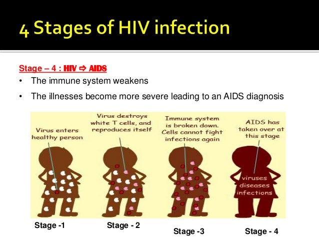 Blood Work A Complete Guide for Monitoring HIV  TheBodycom
