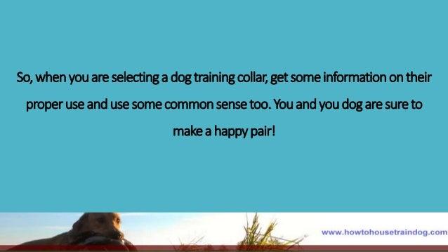 Good Boy Professional Dog Training