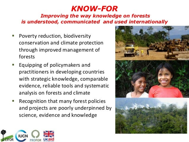  Poverty reduction, biodiversityconservation and climate protectionthrough improved management offorests Equipping of po...