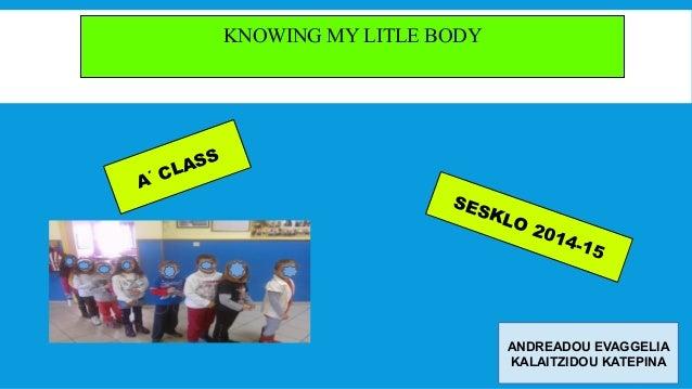 KNOWING MY LITLE BODY Α΄ CLASS SESKLO 2014-15 ANDREADOU EVAGGELIA KALAITZIDOU ΚΑΤΕΡΙΝΑ