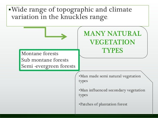 Wide range of topographic and climate variation in the knuckles range. MANY NATURAL VEGETATION TYPESMontane forests Sub m...
