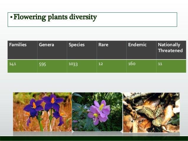 Flowering plants diversity Families Genera Species Rare Endemic Nationally Threatened 141 595 1033 12 160 11