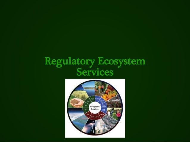 Regulatory Ecosystem Services