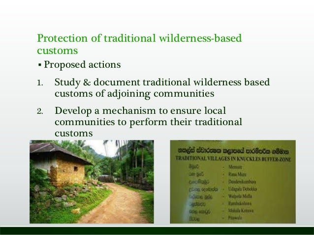 Protection of traditional wilderness-based customs  Proposed actions 1. Study & document traditional wilderness based cus...