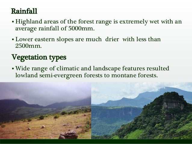 Rainfall  Highland areas of the forest range is extremely wet with an average rainfall of 5000mm.  Lower eastern slopes ...