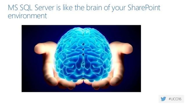 MS SQL Server is like the brain of your SharePoint environment