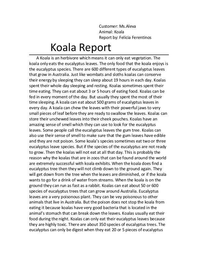 Customer: Ms.Aleva                                      Animal: Koala                                      Report by: Feli...