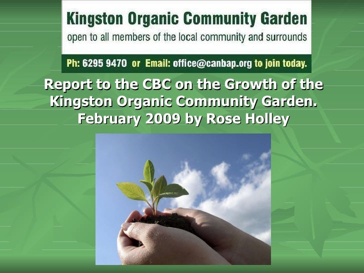 Report to the CBC on the Growth of the Kingston Organic Community Garden. February 2009 by Rose Holley