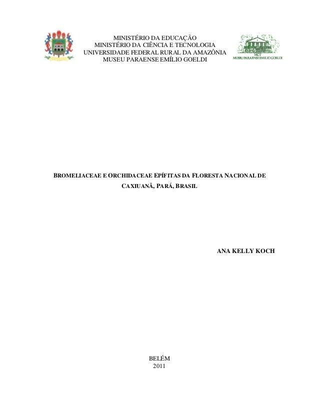 BROMELIACEAE E ORCHIDACEAE EPÍFITAS DA FLORESTA NACIONAL DE CAXIUANÃ, PARÁ, BRASIL ANA KELLY KOCH BELÉM 2011 MINISTÉRIO DA...