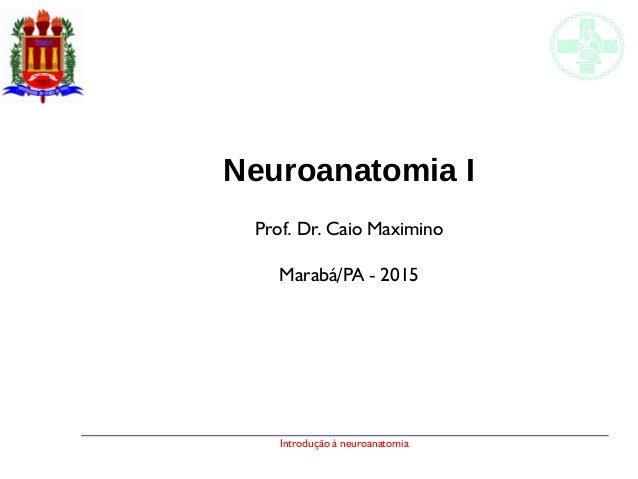 Introdução à neuroanatomia Neuroanatomia I Prof. Dr. Caio Maximino Marabá/PA - 2015