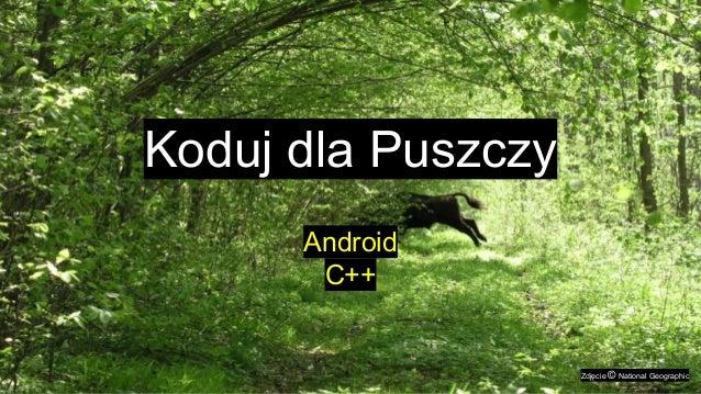 Koduj dla Puszczy Android C++ Zdjęcie © National Geographic