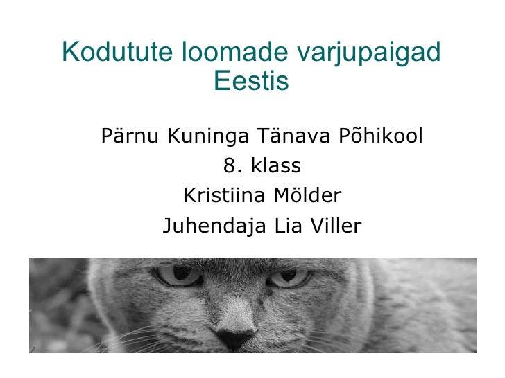 Kodutute loomade varjupaigad Eestis <ul><ul><li>Pärnu Kuninga Tänava Põhikool </li></ul></ul><ul><ul><li>8. klass </li></u...