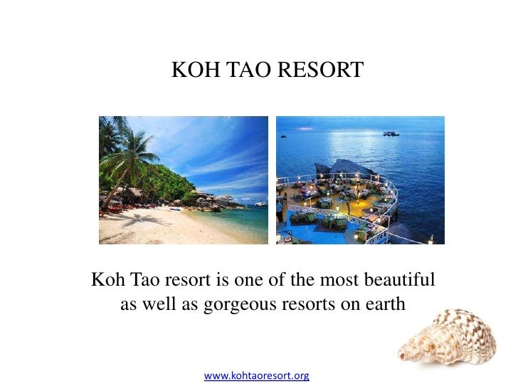 KOH TAO RESORTKoh Tao resort is one of the most beautiful  as well as gorgeous resorts on earth              www.kohtaores...