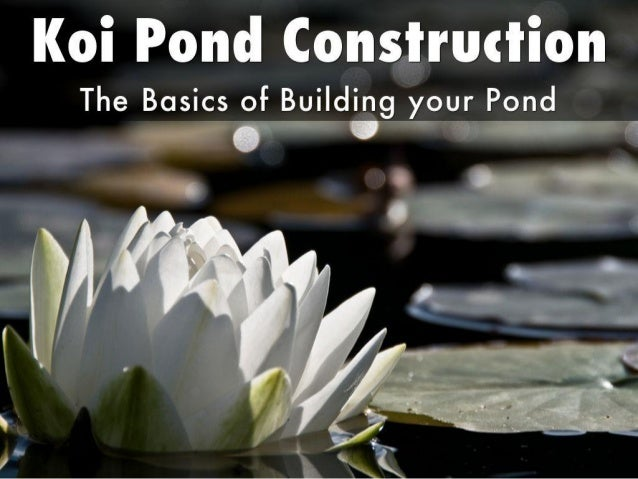 Koi pond construction the basics of building your pond for Koi pond basics
