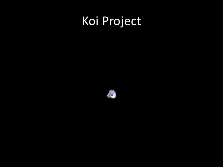 Koi Project<br />