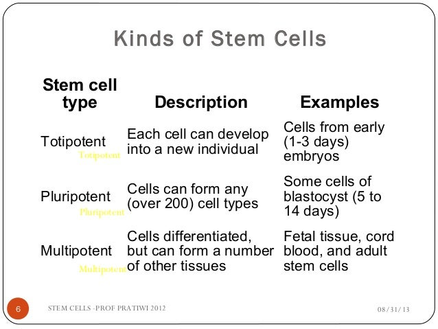 stem cell research vs morality Stem cell research medical science today holds out the promise of cures to diseases and medical advances far beyond anything imagined there are a number of ethical sources of stem cells that hold out realistic hope for cures and treatments of diseases.
