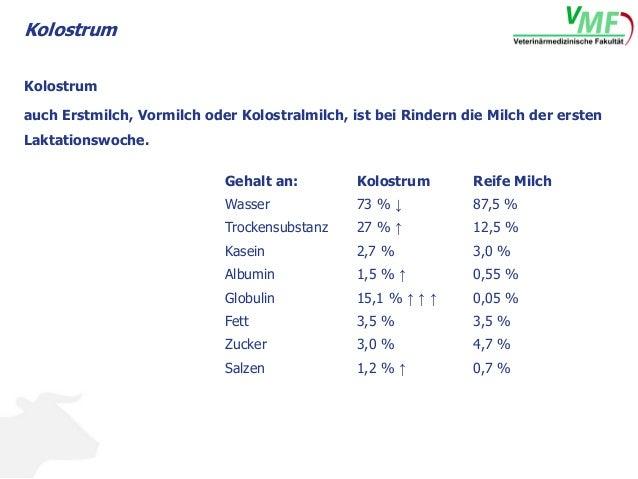 Kolostrum Sperrmilch Slide 2