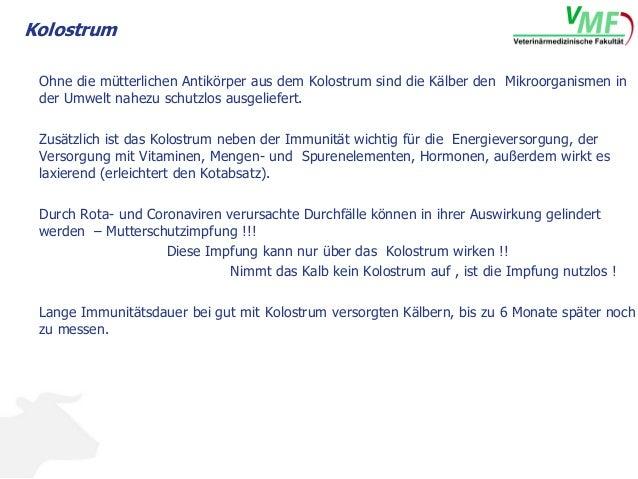 Kolostrum Sperrmilch Slide 3