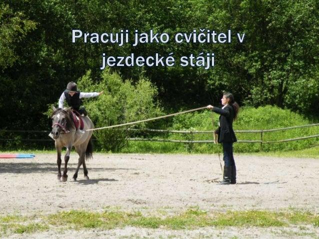 OVLÁDNUTÍ JEZDECKÉHO SPORTU ZAHRNUJE Jezdecké dovednosti Dovednosti v péči o koně Teoretické znalosti
