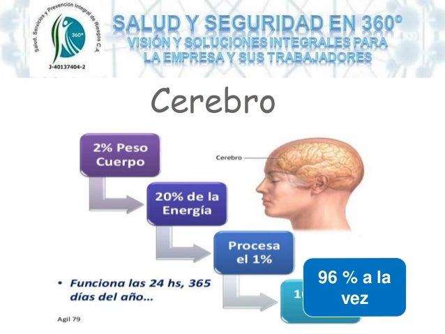 Cerebro 96 % a la vez