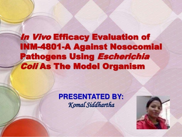 In Vivo Efficacy Evaluation of INM-4801-A Against Nosocomial Pathogens Using Escherichia Coli As The Model Organism PRESEN...