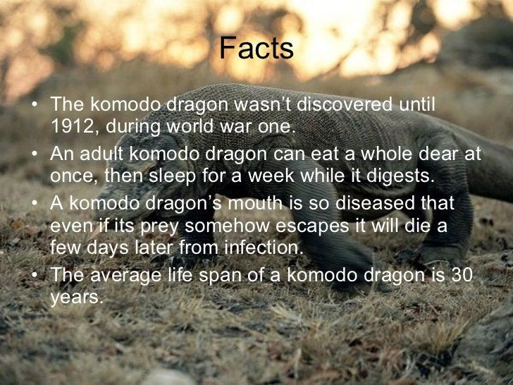 Cody Lynch Komodo dragon