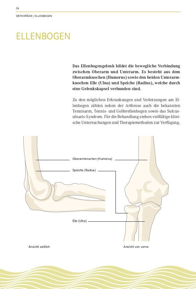 Fantastisch Oberarmknochen Name Galerie - Menschliche Anatomie ...
