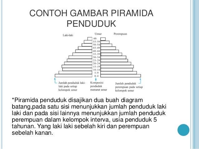 Kondisi Bentuk Indonesia Berdasarkan Bentuk Piramida Penduduk 2